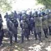 Assalto dei No Tav, scontri e feriti Battaglia nei boschi della Val Susa