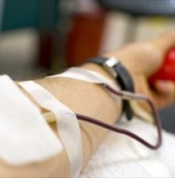 """I gay ed il """"lusso"""" di donare sangue"""