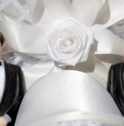 Un cattolico integralista nel Consiglio di Stato: no ai matrimoni gay!
