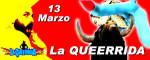 banne_queerridaOK