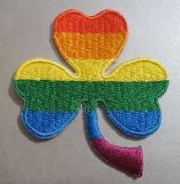 Irlanda: cittadini alle urne per decidere sui matrimoni gay